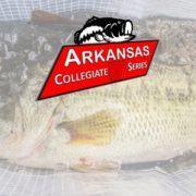 2017 Arkansas Collegiate Series Championship Results