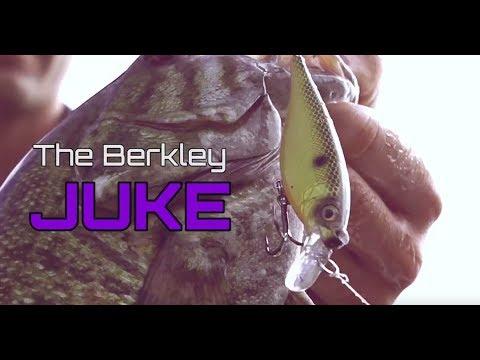 Berkley 2017 Bait Fireline_3