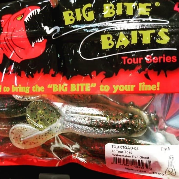 Big Bite Baits: Buzz Through Fall Fishing | Collegiate Bass