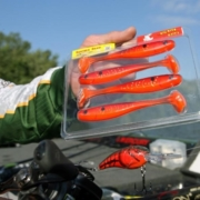 Big Bite Baits: Are you seeing red this Spring? | Collegiate